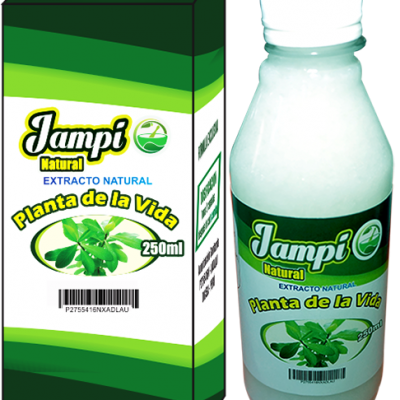 Extracto natural planta de la vida 250 ml
